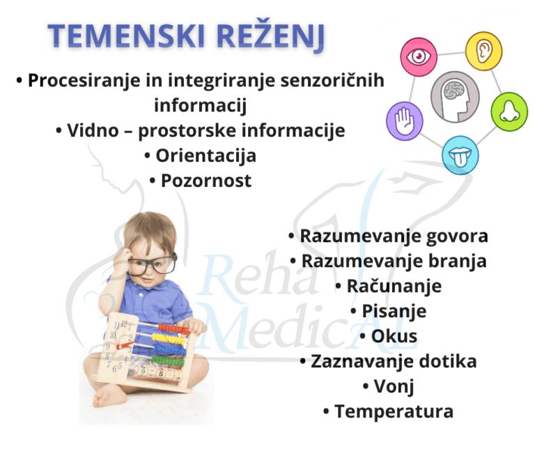 Temenski-rezenj.png